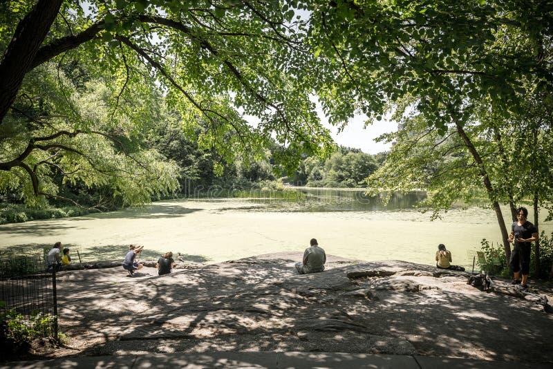 Mening over de Schildpadvijver in Centraal park in New York royalty-vrije stock foto's