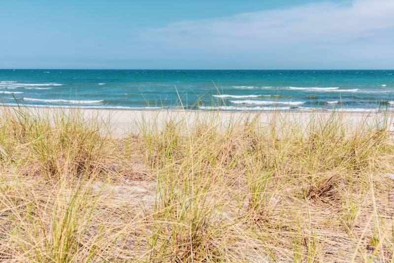 mening over het duin van de Oostzee in mooi weer royalty-vrije stock foto's