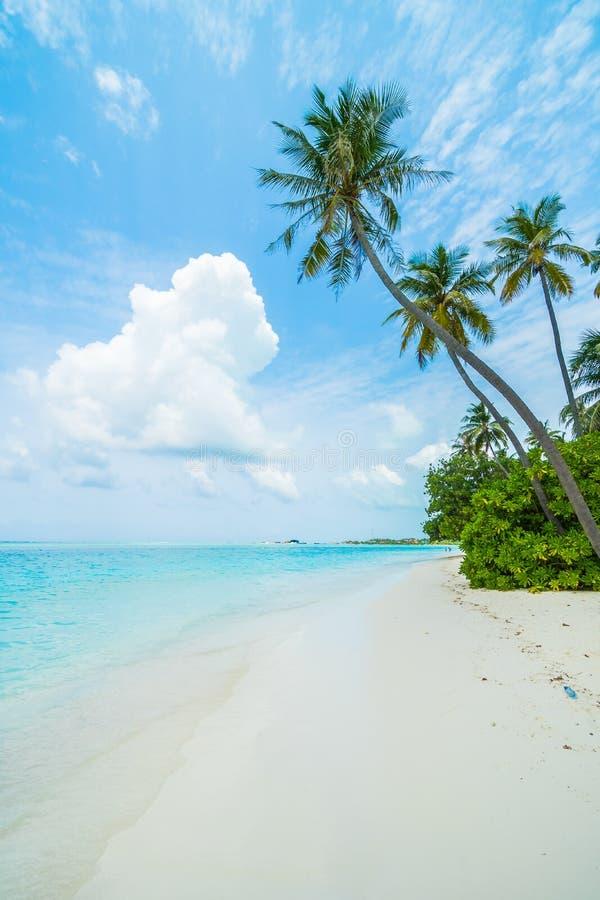 Mening over het Eiland van de Maldiven van vliegtuig royalty-vrije stock afbeeldingen