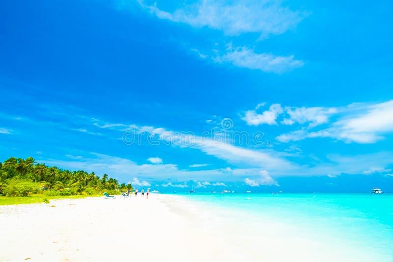 Mening over het Eiland van de Maldiven van vliegtuig stock fotografie
