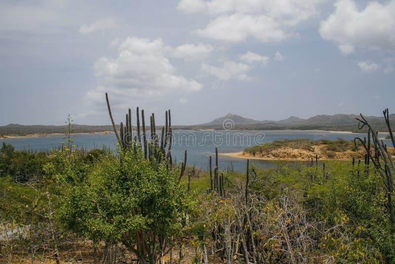 Mooie Bonaire royalty-vrije stock afbeeldingen