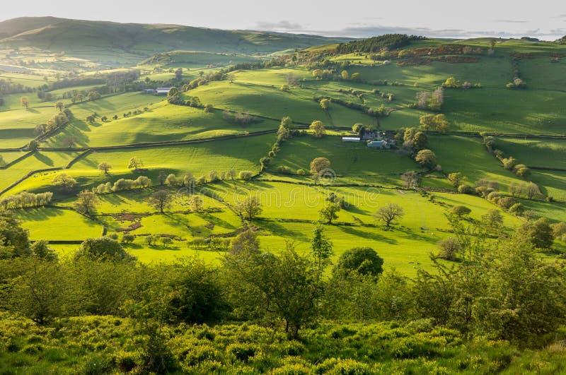 Mening over Llangedwyn-vallei met gebieden en weiden royalty-vrije stock fotografie