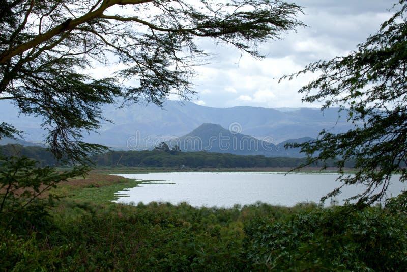 Mening over Meer Naivasha van Elsamere stock afbeeldingen
