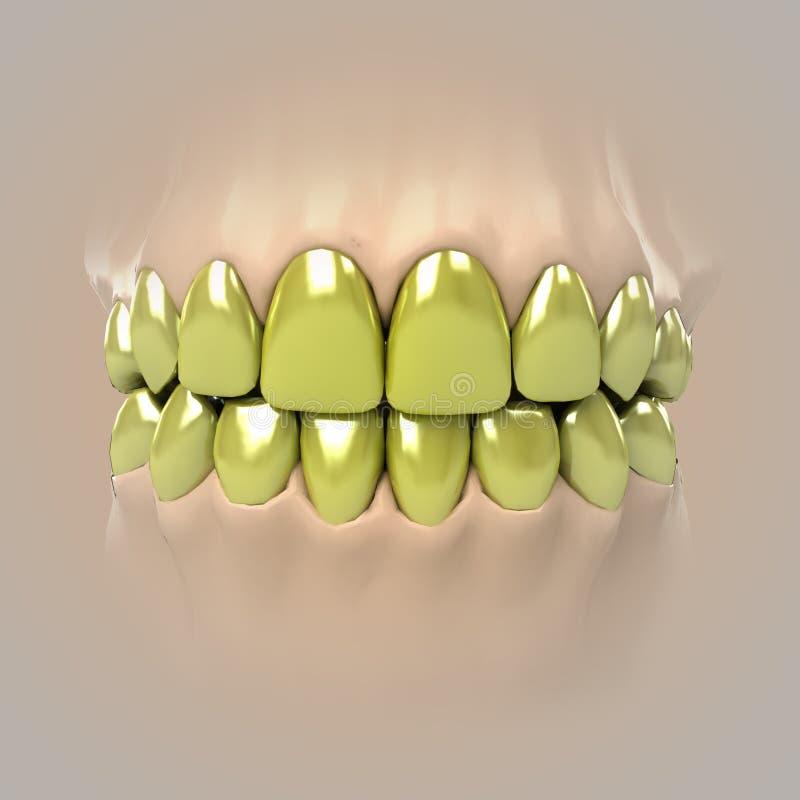 Mening over schone zuivere witte gouden of ongezonde tanden vector illustratie