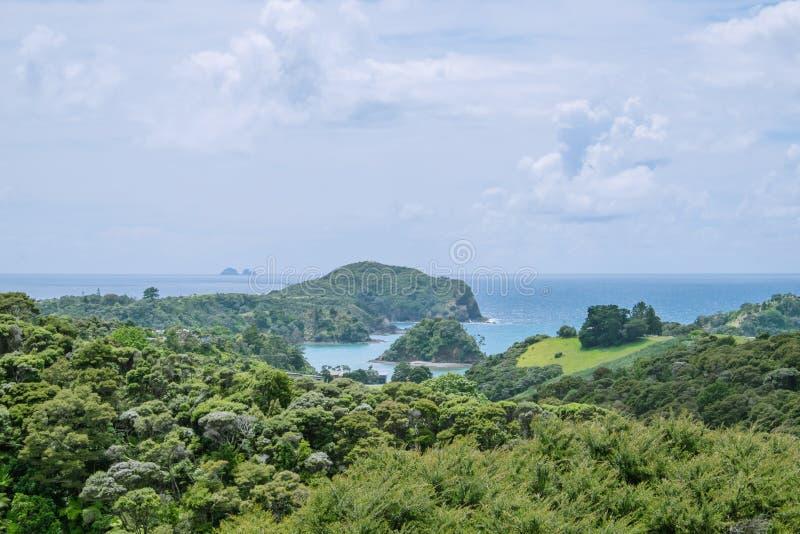 Mening over struik aan Tutukaka-Haven en de Slechte Ridderseilanden, stock foto's