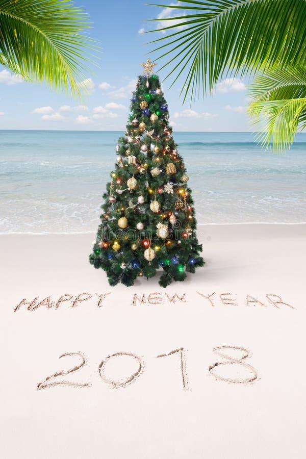 Mening van aardige Kerstmis en het nieuwe tropische strand van het jaarthema royalty-vrije stock fotografie
