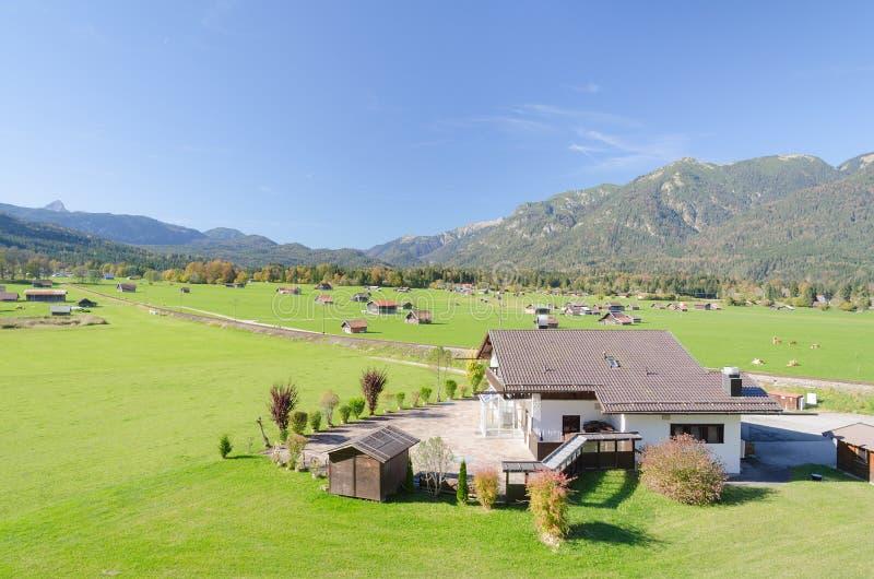Mening van Alpien hooglandweiland royalty-vrije stock foto's