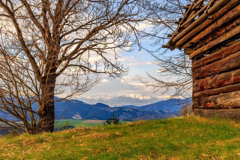 mening van berg en oud blokhuis stock fotografie