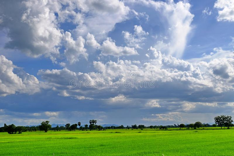 Mening van bergen, hemel, stromen onder groene bossen stock foto's