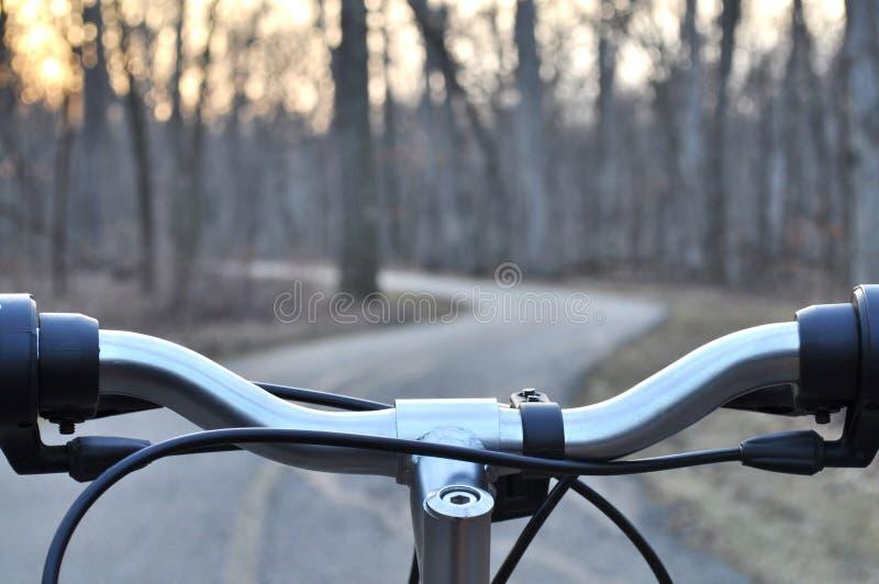 Mening van bosweg van de achter bar van het fietshandvat royalty-vrije stock foto
