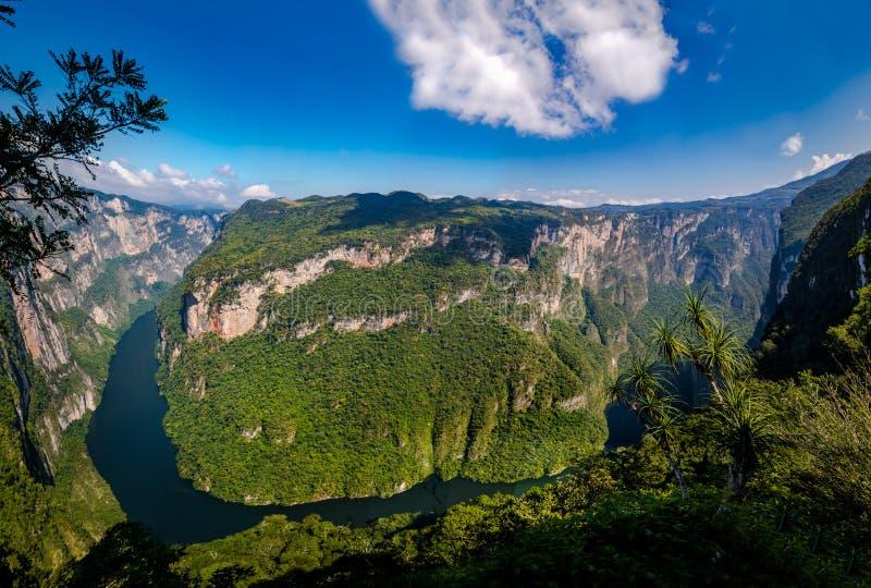 Mening van boven de Sumidero-Canion - Chiapas, Mexico stock foto's