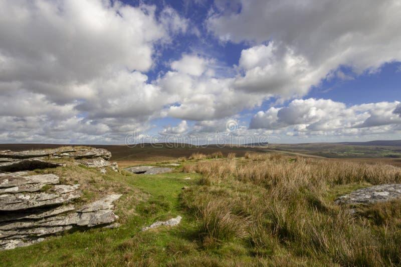 Mening van Dartmoor van Ruwe Piek royalty-vrije stock afbeeldingen