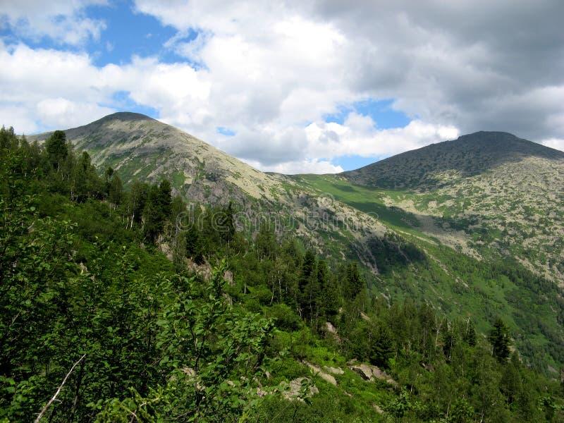 Mening van de beboste berghellingen stock afbeeldingen