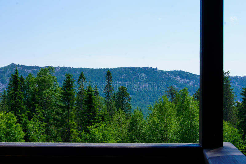 Mening van de bergen en het bos stock afbeelding