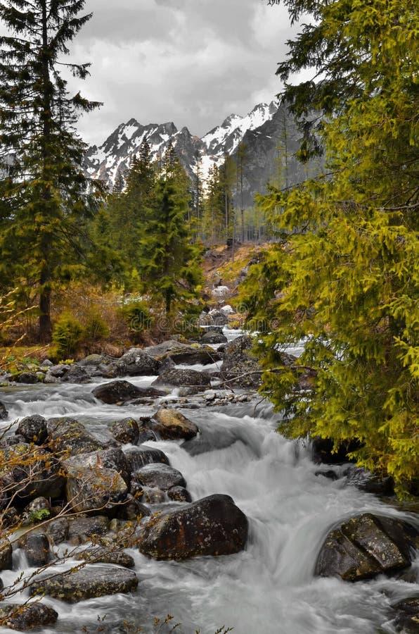 Mening van de Bergen Tatra royalty-vrije stock foto