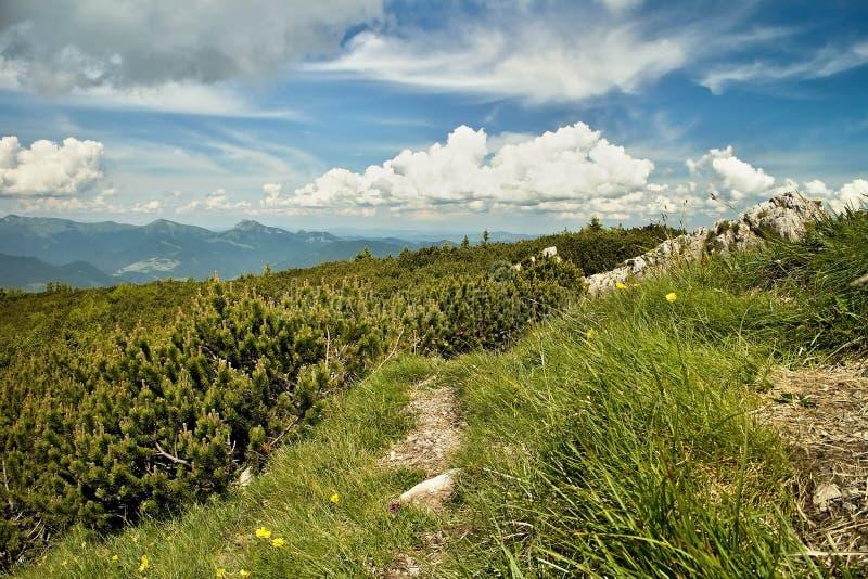 Mening van de Choc-bergen royalty-vrije stock foto