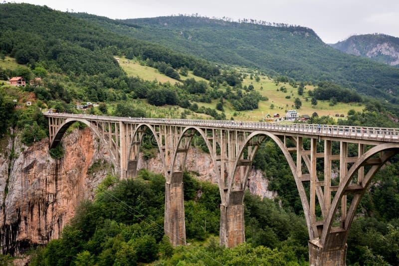 Mening van de Djurdjevic-brug boven Tara rivier royalty-vrije stock afbeeldingen