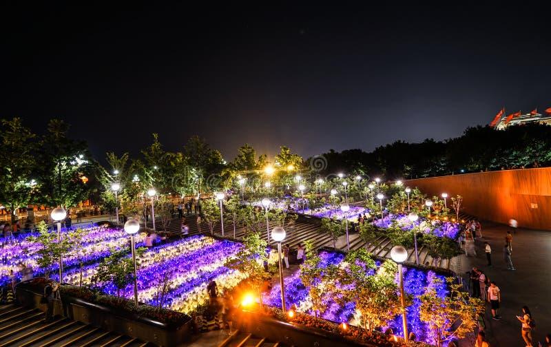 Mening van de het Theaternacht van China de Nationale Grote royalty-vrije stock foto