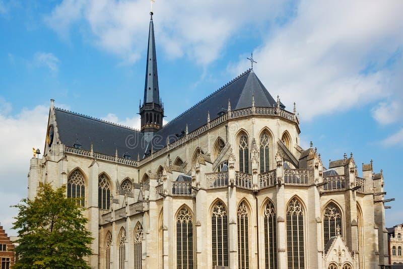 Mening van de Kerk van Heilige Peter ` s van Leuven, Vlaamse Brabant, België stock foto's