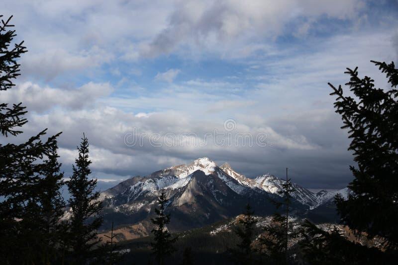 Mening van de Poolse bergen van Gesia Szyja Tatry stock fotografie