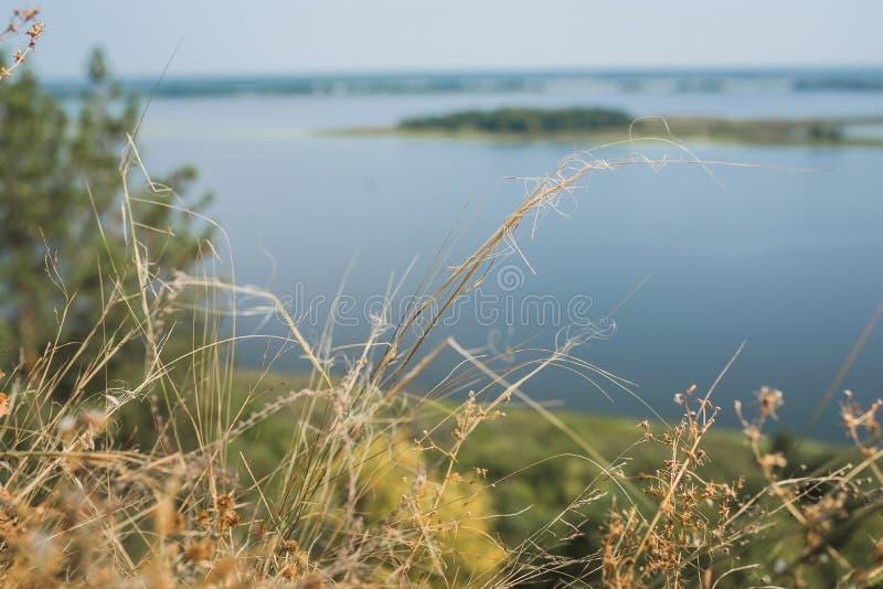 Mening van de rivier door droog gras royalty-vrije stock foto's