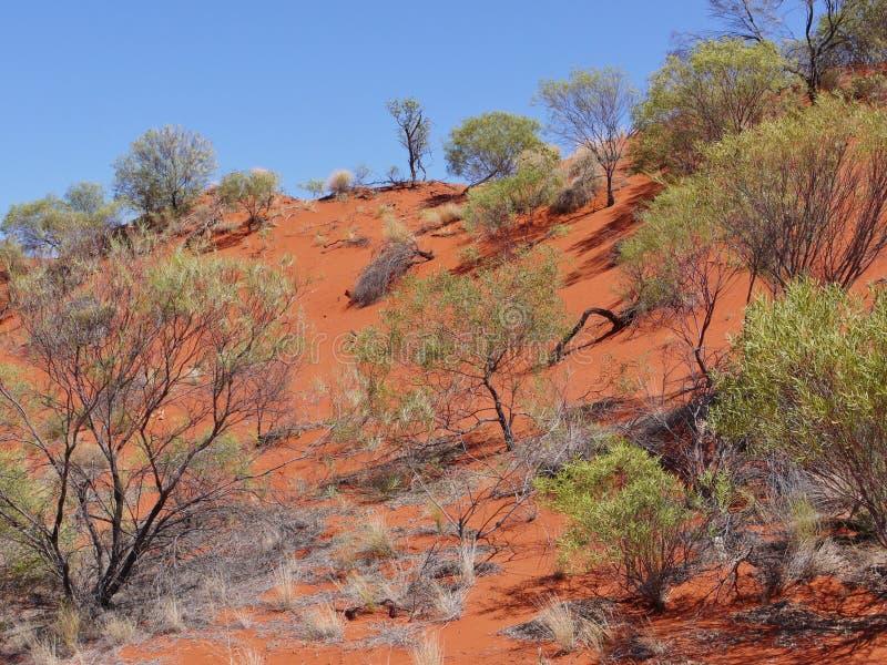 Download Mening Van De Rode Aarde Van Het Binnenland Van Australië Stock Afbeelding - Afbeelding bestaande uit binnenland, kleuren: 39102383