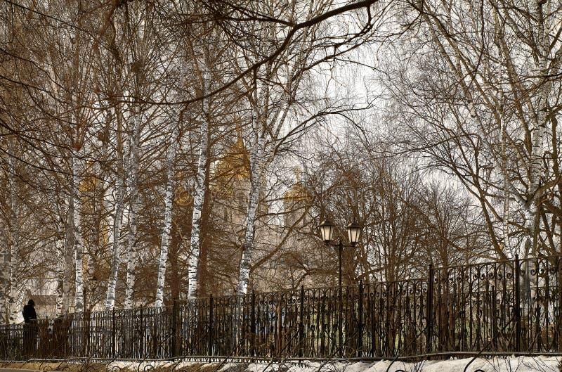 Mening van de Transfiguratiekathedraal van het klooster Diveevo, Rusland door berken stock afbeeldingen