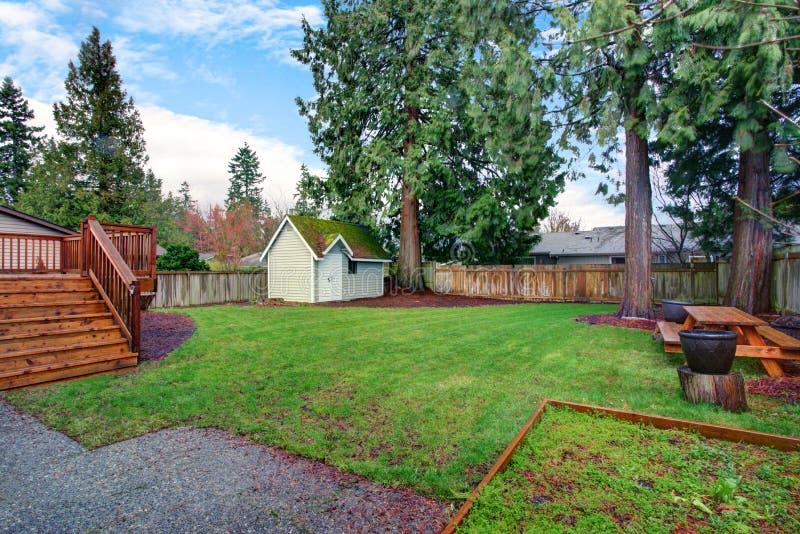 Mening van een achtertuin met groen gras en kleine loods stock afbeelding