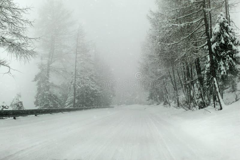 Mening van een auto die door de sneeuw behandelde winter, zware snowin berijden royalty-vrije stock afbeelding