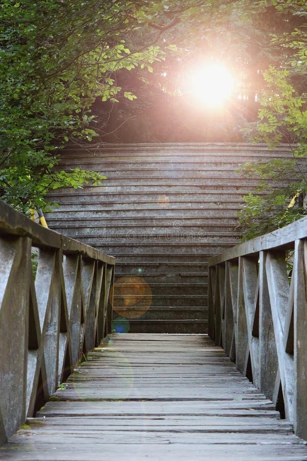 Mening van een houten brug bij zonsondergang stock afbeeldingen