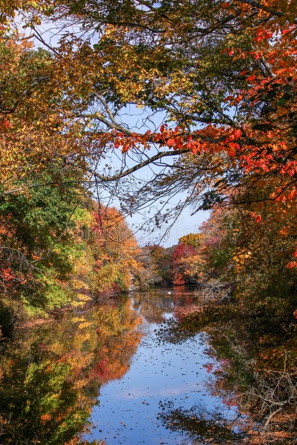 Mening van een rivier door dalingsgebladerte dat wordt ontworpen royalty-vrije stock fotografie
