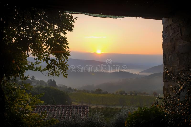 Mening van een terras aan een zonsopgang over mistige heuvels in vineyar stock foto's