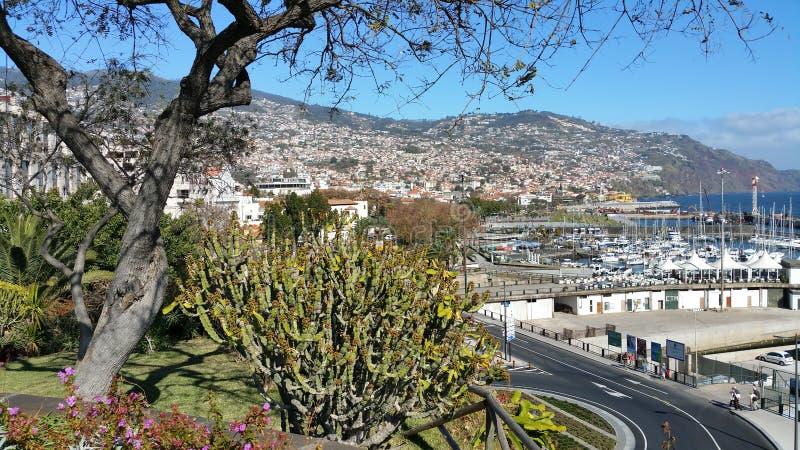 Mening van Funchal, de belangrijkste stad over Madera stock afbeeldingen