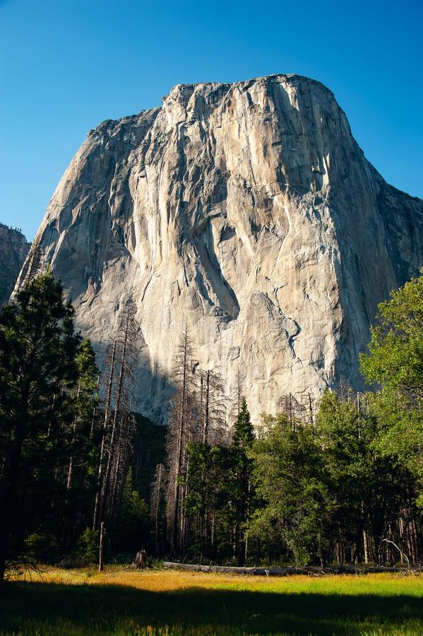 Mening van Gr Capitan in Yosemite Avondzon die over de rotsoppervlakte glanzen met bomen in de voorgrond Juni 2018 Verticale I stock foto's