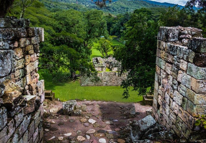 Mening van Groot Plein in Mayan Ruïnes - de Archeologische Plaats van Copan, Honduras royalty-vrije stock foto's