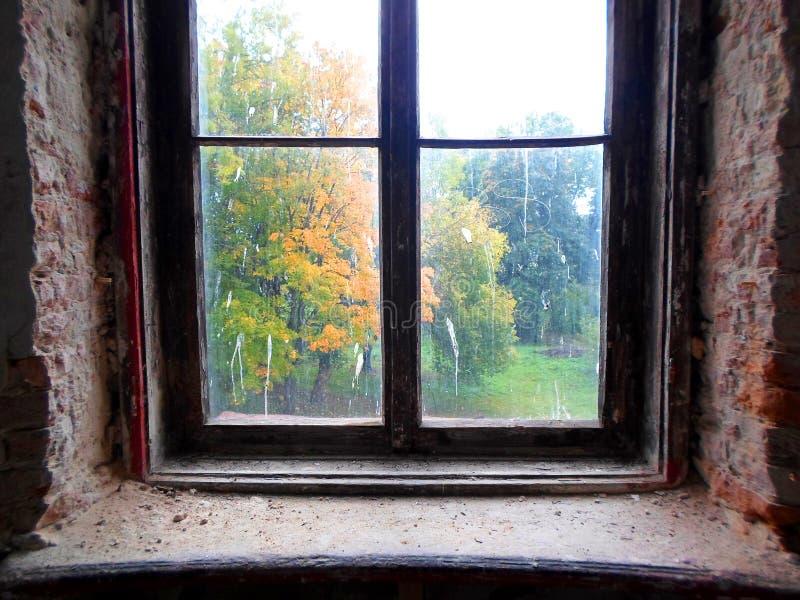 Mening van het de herfstpark door een oud vuil venster royalty-vrije stock afbeelding