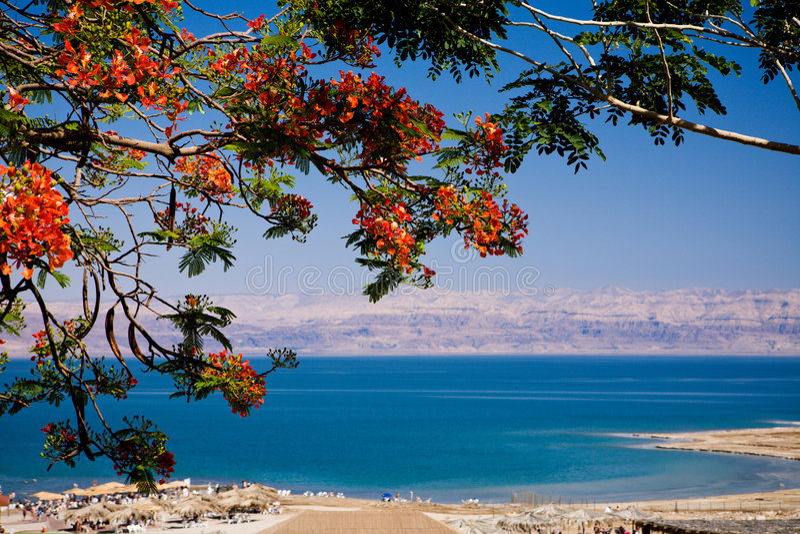 Mening van het Dode Overzees, Israël royalty-vrije stock foto's