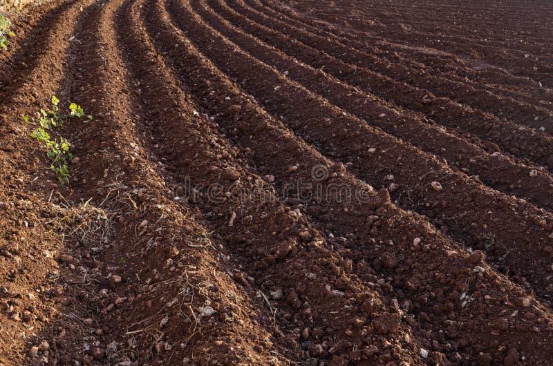 Mening van het geploegde land Voren van de ploeg Landbouw stock fotografie