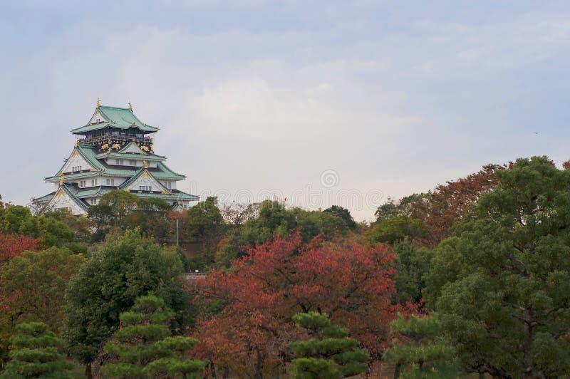 Mening van het kasteel van Osaka stock fotografie