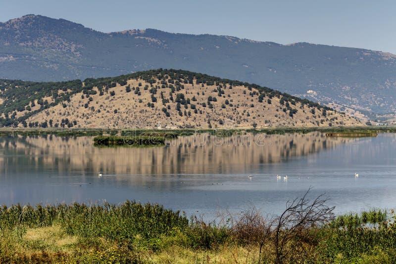 Mening van het meer Hemaditida stock foto's