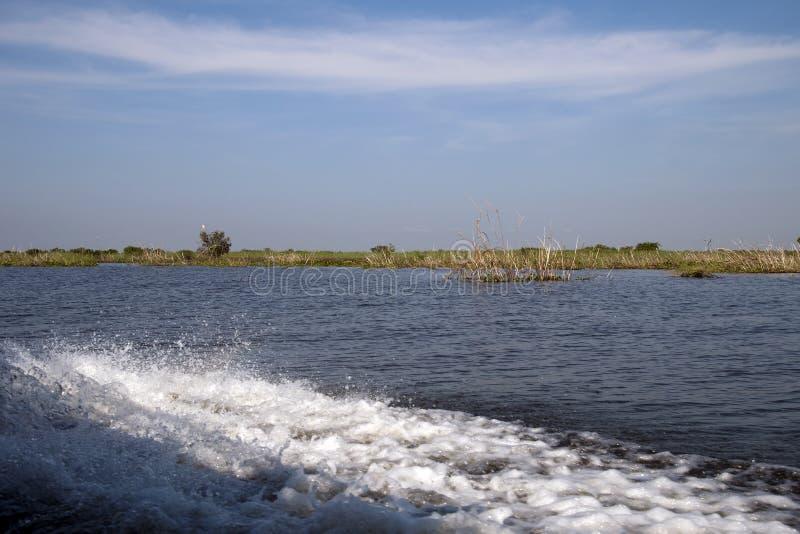 Mening van het moerasland van Prek Toal stock fotografie
