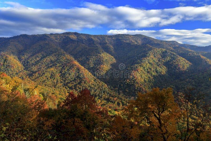 Mening van het Nationale Park van Great Smoky Mountains stock afbeeldingen