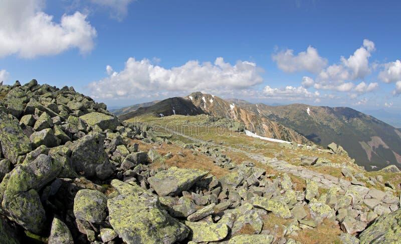 Mening van heuvel Chopok, Slowakije stock afbeeldingen