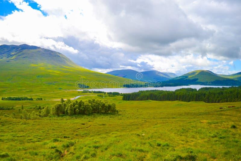 Mening van Hooglanden, in Schotland, een mooi groen gebied met l royalty-vrije stock afbeeldingen
