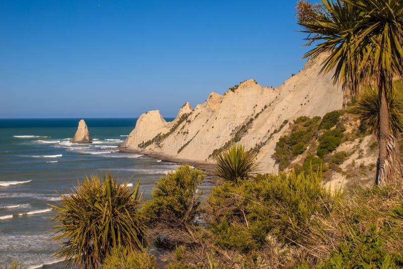 Mening van Kaapontvoerders Nieuw Zeeland stock foto's