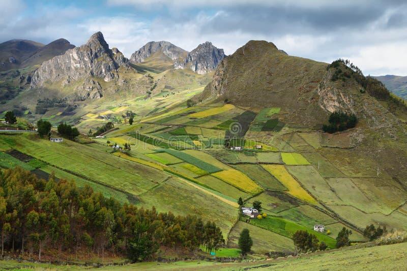 Mening van kleurrijke terrasgebieden royalty-vrije stock afbeelding