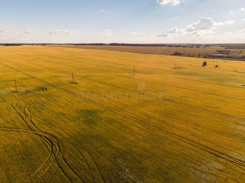 mening van landbouwgebieden van hoogten in Rusland royalty-vrije stock afbeelding