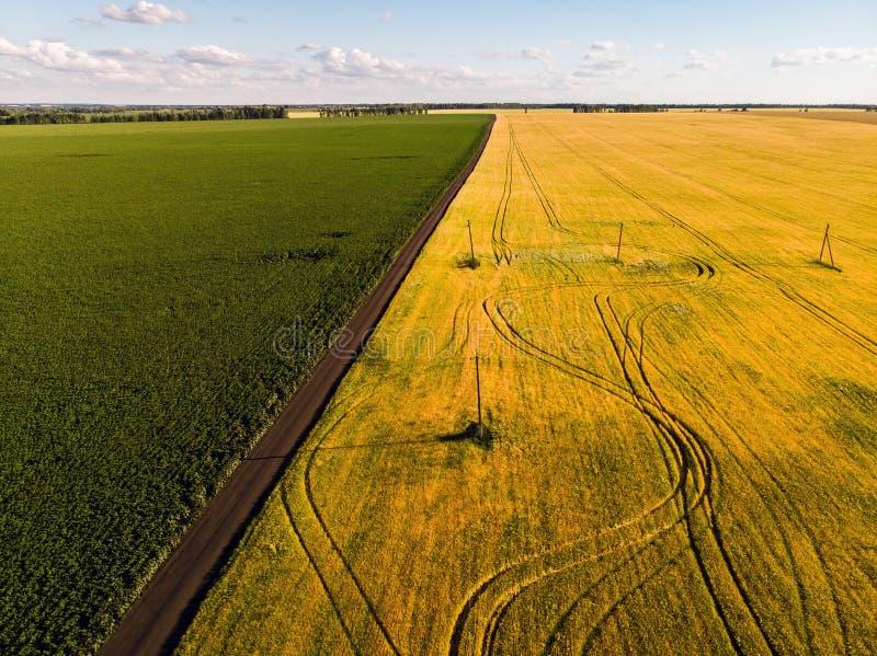 mening van landbouwgebieden van hoogten in Rusland royalty-vrije stock foto