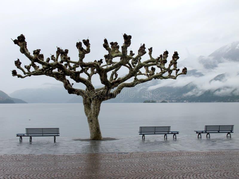 Mening van meer Maggiore in Ascona stock afbeeldingen