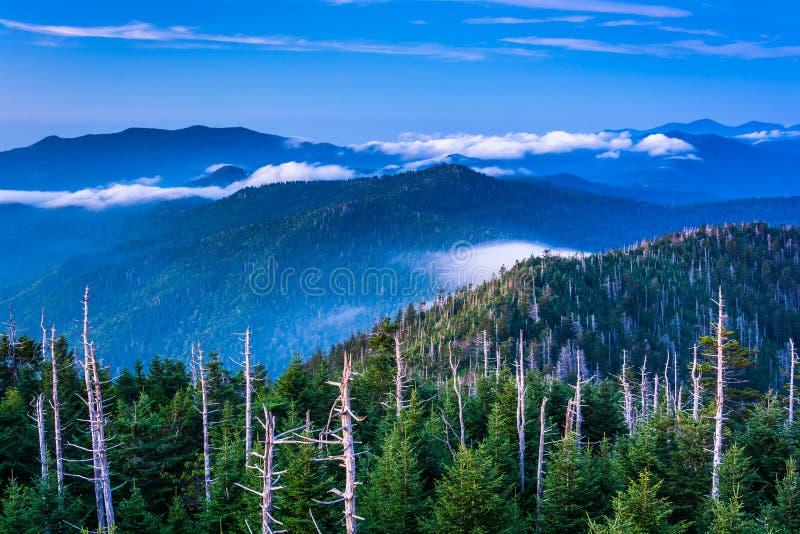 Mening van mist in Smokies van de Koepelobservatie Towe van Clingman stock fotografie
